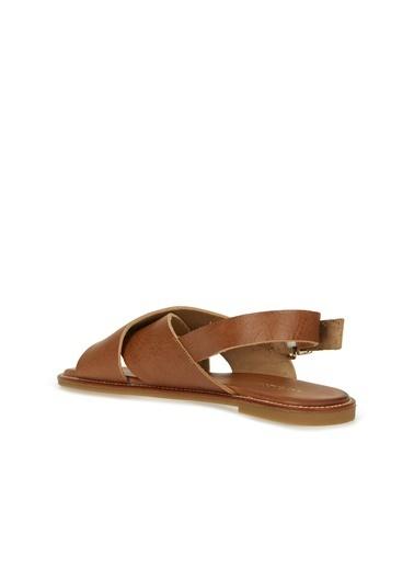 Divarese Divarese 5025176 Çapraz Bantlı Deri Renkli Kadın Sandalet Taba